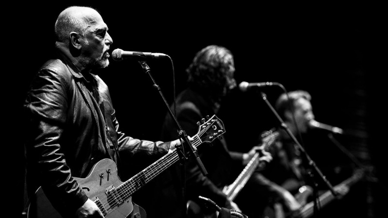The 'Black Sorrows' sweep into Roxy - blog post image