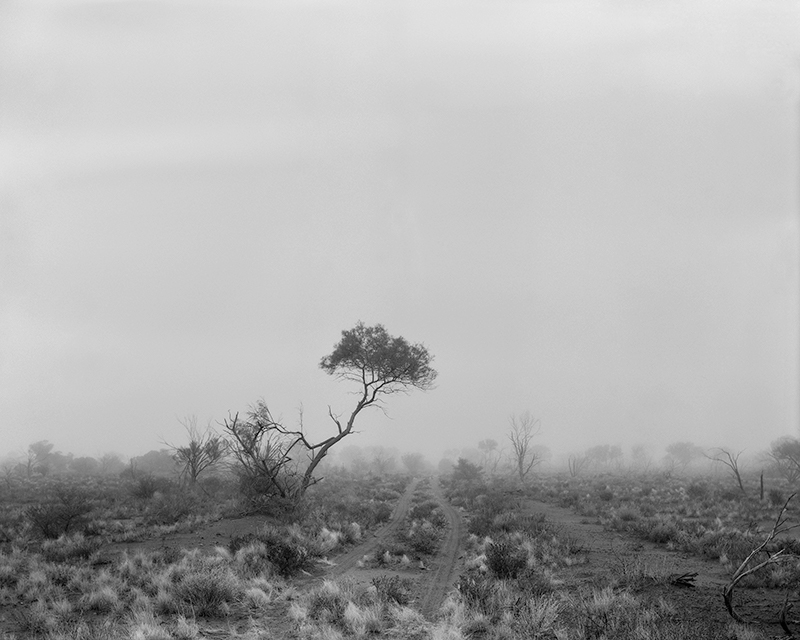 Black Mist Burnt Country: Testing the Bomb. Maralinga and Australian Art - blog post image